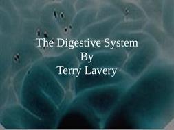 Digestive-System-2010.ppt