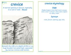 Flashcard-crevice.pdf