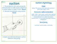 Flashcard-suction.pdf