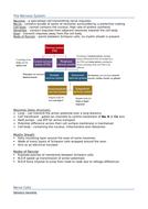 BIO Alevel (Edexcel SNAB) Revision Notes - Topic 8 - Grey Matter
