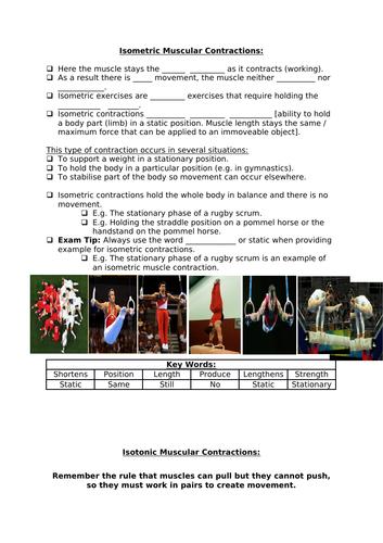 AQA 9-1 GCSE PE - Muscle Contractions