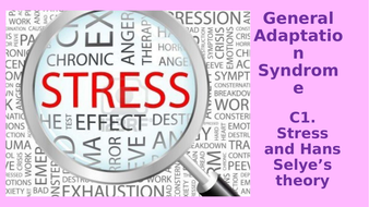 C1.-Affects-of-stress.pptx