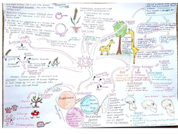 Concept Map About Evolution.Cb4 Revision Mind Map Edexcel Natural Selection Evolution By