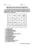 French passé composé with avoir conjugation of regular IR-verbs magic square fun worksheet