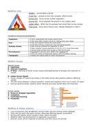 Hazards---Wildfires.docx