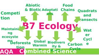 B7-Ecology-revision.pptx