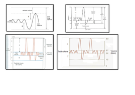 Mechanics of breathing with spirometry traces supported