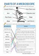 Ks3 4 Parts Of A Light Microscope Worksheet Teaching Resources