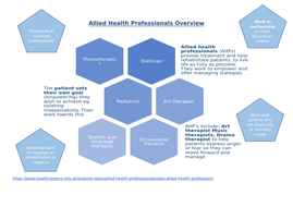 Allied-Health-Professionals-Overview..docx