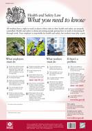 HSE-poster.pdf