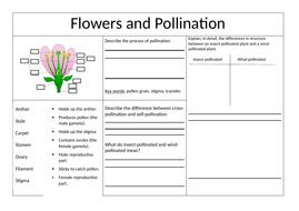 pollination fertilisation and germination ks3 worksheet by jcvenables teaching resources. Black Bedroom Furniture Sets. Home Design Ideas