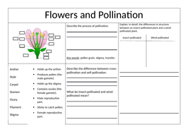 Pollination-and-Germination-Worksheet---KS3.docx