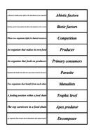 B8-Tarsia-Cards.pdf