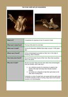 Skills_Log_workbook_headdress_teacher.pdf