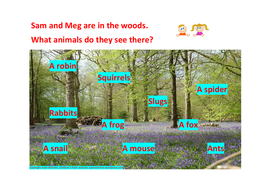 Yr-1-Phonics---Woodland-Animals.pdf