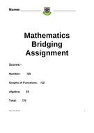 Assessment-Bridging-Year-12-final.docx