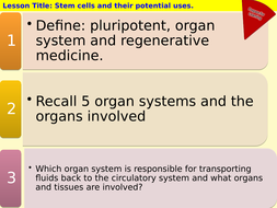 2 6 Cell Division Lessons Biology A Level OCR A