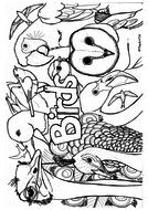 Birds-colouring.pdf