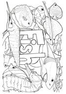 fish-colouring.pdf