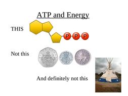 L18-ATP.ppt