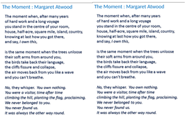 the moment margaret atwood