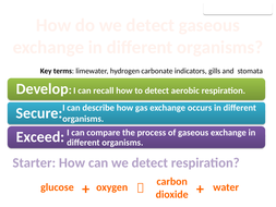 8Cd Comparing gaseous exchange (Exploring Science)