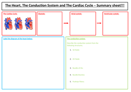 3.-CV-System-Summary-Sheets--(1).docx