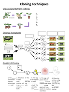 Cloning - 9-1 Biology