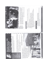 5.Pompeii---HW-worksheet.pdf