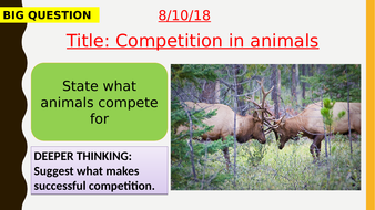AQA new specification-Competition in animals-B16.4