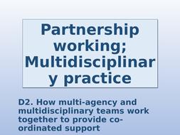 D2.-Multidisciplinery-working.pptx