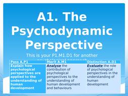 A1.-Psychodynamic-perspectives.pptx