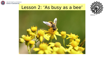 Lesson-2.pptx