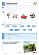 Finding and using common nouns worksheet - Year 2 Spag