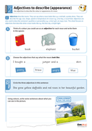 Using adjectives to describe appearance worksheet - Year 2 Spag