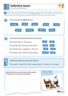 Using collective nouns worksheet - Year 3 Spag