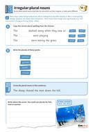 Using irregular plural nouns worksheet - Year 3 Spag