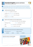 Standard English correct verb form worksheet - Year 4 Spag