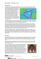 The Slave Trade Information Sheet - Black History in Britain KS2