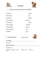 German---Haustiere-Worksheet---Year-7-.docx