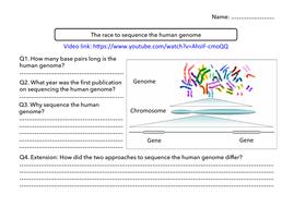 Genome-worksheet.pdf