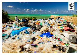 WWF-Oceans-and-Plastics-KS2-Activity2-Photos-to-print-3.pdf