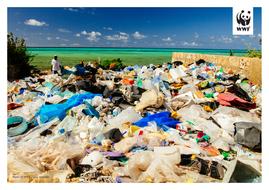 WWF-Oceans-and-Plastics-KS2-Activity2-Photos-to-print-3.pdf