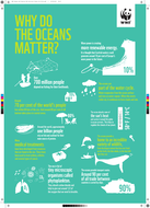 WWF-Oceans-and-Plastics-KS2-Activity1-Poster-Pro-Print.pdf