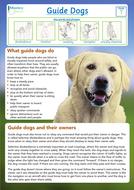 Guide-Dogs.pdf