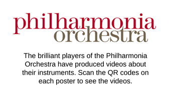 Instruments-of-the-Orchestra-Wall-Display.pptx