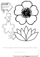 Option-6---A4---Flower-Theme.docx