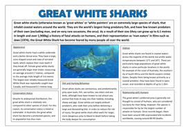 Example-2-Non-Chron-Report---Great-White-Sharks.pdf