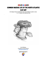 COMMON-MARINE-LIFE-OF-THE-NORTH-ATLANTIC-Article_Page_1.jpg