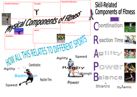 BTEC SPORT Level 2 UNIT 1 Revision Mat